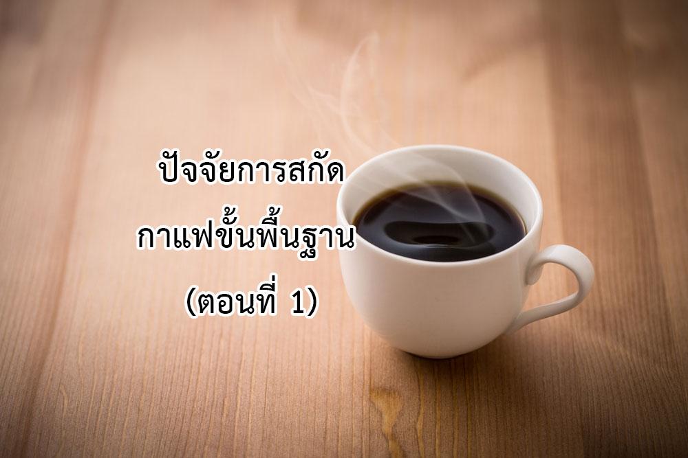 การสกัดกาแฟ